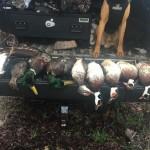 duck27